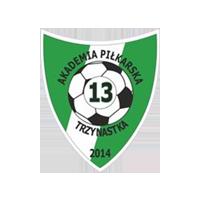 Akademia Piłkarska 13 piłka nożna